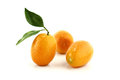 Small Orange Fruit Stock Photography