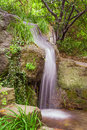 Small park waterfall among plants Stock Image