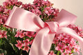 Small pink flowers with bow Royalty Free Stock Photo