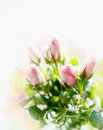 Small pink roses bouquet on the windowsill in bright light Royalty Free Stock Photo