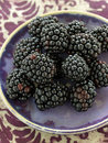 Small plate of blackberries Royalty Free Stock Photo
