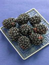 Small plate of blackberries Royalty Free Stock Images