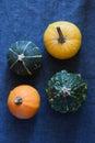 Small pumpkins four colorful autumn Royalty Free Stock Photos