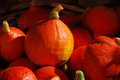 Small pumpkins for sale at open vegetable market Royalty Free Stock Photography