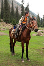 Small rider sitting on a brown horse in a valley between the mountains of Central Asia Royalty Free Stock Photo