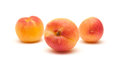 Small ripe apricots Royalty Free Stock Photo
