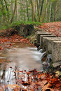 Small river between an autumnal forest Royalty Free Stock Photo