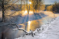 Small river in winter scandinavian with sunbeams filtering through bare birch trees Stock Image