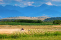 Small scale farming with tractor and plow in field stork mountains background Royalty Free Stock Photos