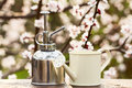 Small sprayer and watering can on the background a blossoming tree Stock Photo