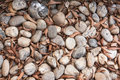 Small stone background gravel and falling leaves Royalty Free Stock Image