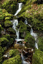 Small stream of falling water over moss and rocks Royalty Free Stock Photo
