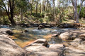 A small stream flowing through John Forrest National park Royalty Free Stock Photo