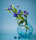 Small summer flowers in glass base on blue Royalty Free Stock Image
