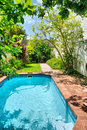 Small swimming pool and garden shot near stellenbosch cape town south africa Stock Photography