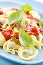 Small tortellini Royalty Free Stock Image