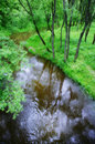 Small tranquil river Stock Images
