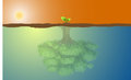Small tree and big reflection this is an illustration of a concept of trees with to show the potential Stock Photos