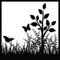 Small tree and butterflies Royalty Free Stock Photography