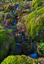 Small trickle of water flowing over moss soaked rocks by the Watkins path, Snowdon Royalty Free Stock Photo