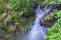 Small tropical creek waterfall Royalty Free Stock Photo