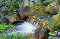 Small tropical waterfall in garden Royalty Free Stock Photo