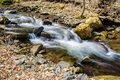 Small Trout Stream in the Blue Ridge Mountains Royalty Free Stock Photo