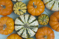 Small Varied Gourds Stock Photos