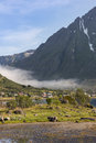 Small village in valley on Lofoten Islands Royalty Free Stock Photo