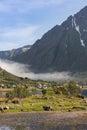 Small village in valley on Lofoten Islands Royalty Free Stock Photo