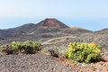 Small volcano at la palma canary islands Royalty Free Stock Photography