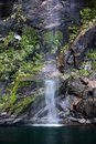 Small water fall in the milford sound southland south island new zealand Stock Photos