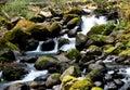 Small water falls Royalty Free Stock Photo