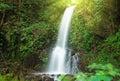 Small waterfall in jungle near lake maninjau west sumatra indonesia Stock Images
