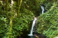 Small waterfall in monteverde cloud forest reserve
