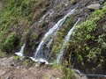 Small waterfall at mysterious Laurel forest Laurisilva, lush subtropical rainforest at hiking trail Los Tilos, La Palma