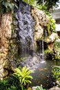 Small waterfall and pond with a koi carps fish Royalty Free Stock Photo