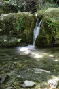 Small waterfall with silk effect Royalty Free Stock Photo