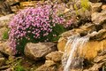 Small waterfall in a stone garden and purple flowers Royalty Free Stock Photo