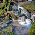 Small waterfall on stream in forest Royalty Free Stock Images