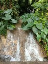 Small waterfall at Konoko Falls in Jamaica Royalty Free Stock Photo