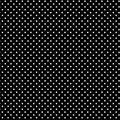 Piccolo bianco nero