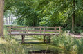 Small wooden bridge in a park Royalty Free Stock Photo