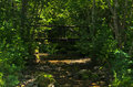 Small wooden bridge in a shadow at river Uvac gorge Royalty Free Stock Photo
