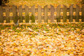 Small wooden fence and yellow leaves of autumn see my other works in portfolio Stock Photo