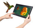 Smart new technology concept tablet interactivity and high performance Stock Photos