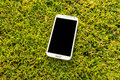 Smart phone on grass touch screen the field of Stock Images