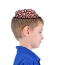 A smart young boy has a brain sketch on his head and thinking on a white isolated background Stock Image