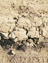stock image of  Texture of a clay dry road with cracks