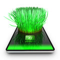 A smartphone application is growing grass Royalty Free Stock Image
